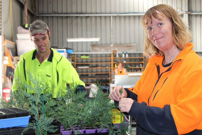 Employees at Yarra View Nursery